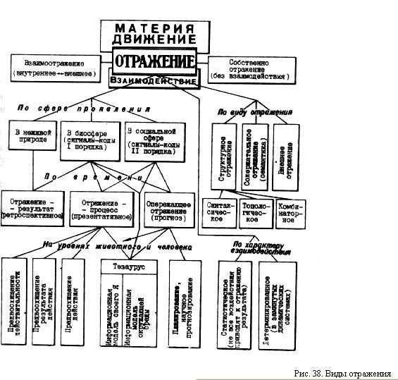 информационная картина мира: